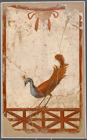 Peackock Fresco - Getty Collection